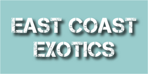East Coast Exotics.png