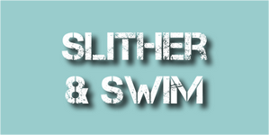 Slither and swim.png