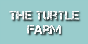 the turtle farm.png