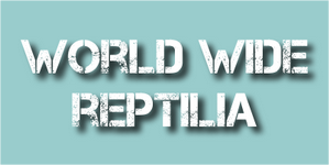 world wide reptilia.png